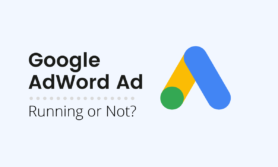 How to check Google AdWords Ad is running