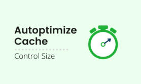 Prevent Autoptimize Cache getting too big